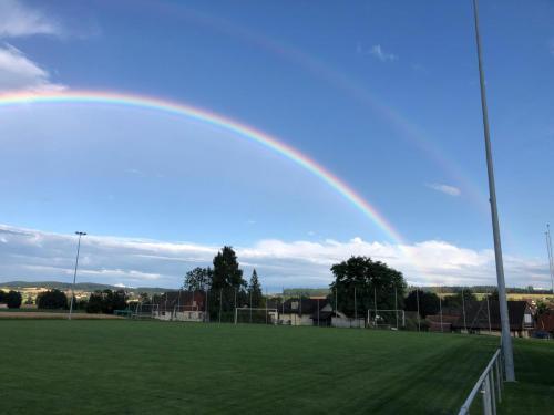 Regenbogen6