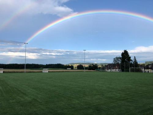 Regenbogen7